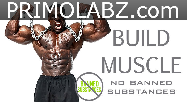 Legal Anabolic Muscle Steroids
